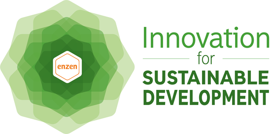 Innovation for Sustainable Development logo
